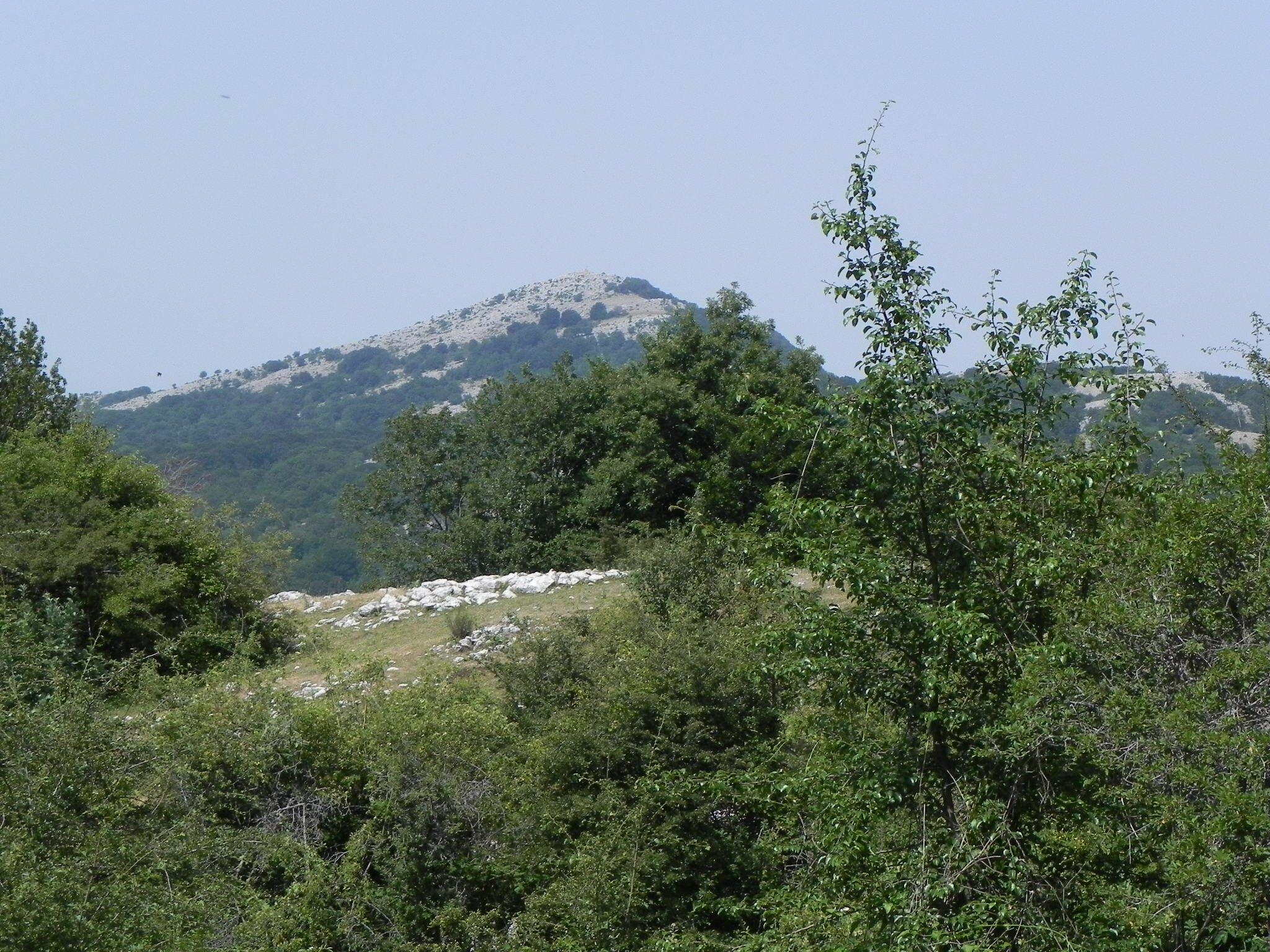 vista-del-monte-pellecchia